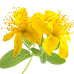 st-johns-wort-for-anxiety