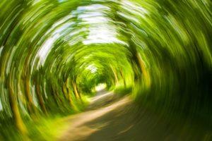 dizziness symptom of anxiety
