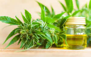 CBD Oil For Anxiety, Does It Work? - The Anxiety Guy Blog
